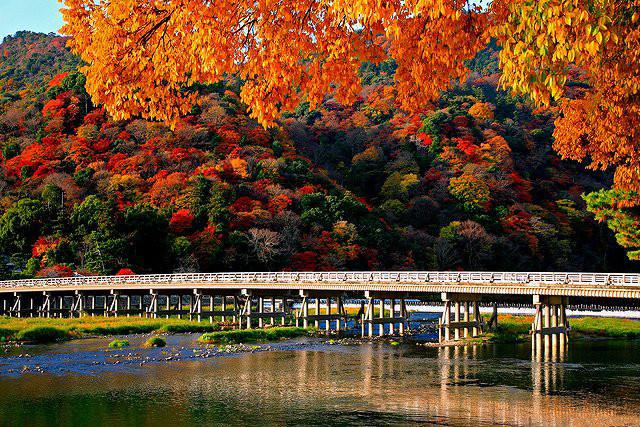 arashiyamakouyou02