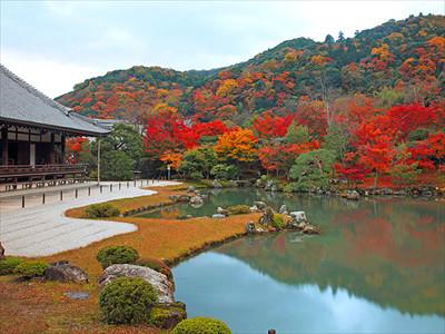 arashiyamakouyou03