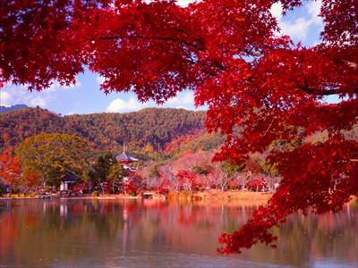arashiyamakouyou04